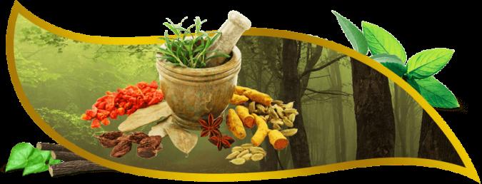 ayurvedic-medicine-manufacturer